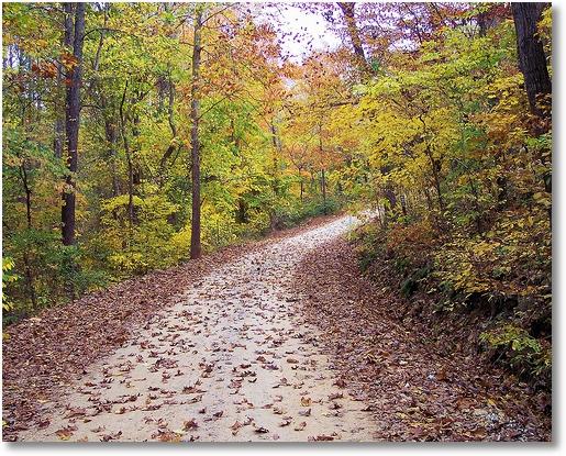 Autumn in the Ozarks - Buffalo National River, Arkansas