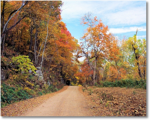 Road to Kyle Landing-Buffalo National River Arkansas