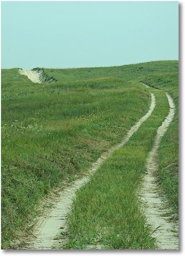 A long sandhill driveway, Nebraska