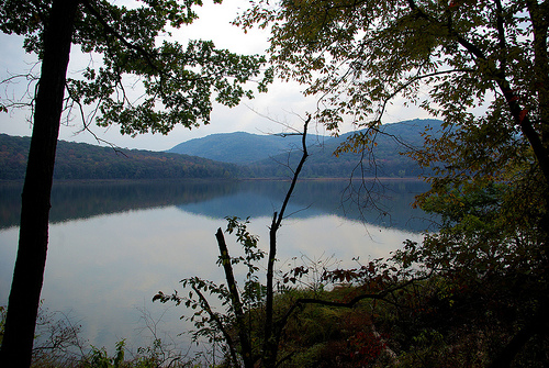 Trail View Of Lake Fort Smith