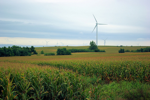 Wind generators in northern Illinois fields, September 8, 2008