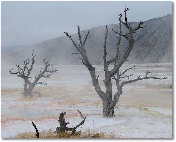 Yellowstone National Park Wyoming. Yellowstone National Park