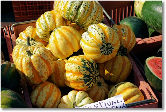 Squash, Dane County Farmers' Market on the Square, Madison, Wisconsin 9-20-2008