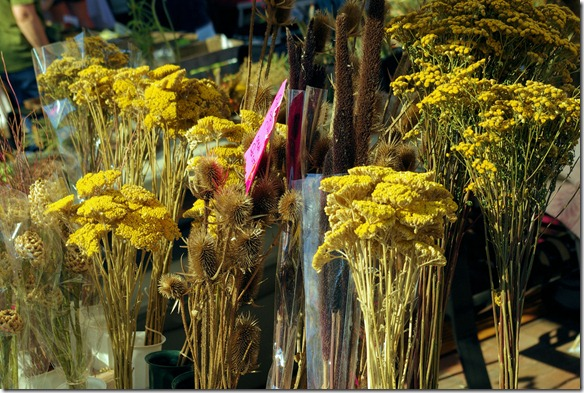 flowers_at_the_Madison_Wisconsin_farmers_market