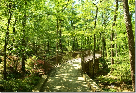 Garvan Woodland Gardens serpentine canopy bridge