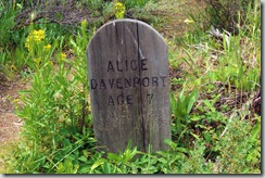 Alice Davenport, Age 7, Jan 2, 1928 to September 2, 1935, Bonanza Cemetery, Idaho