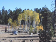 RV camped near aspen; Dispersed camping; Malheur National Forest