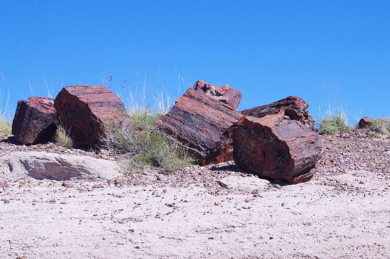 Petrified Forest National Park, Arizon, October 9, 2011 - 3